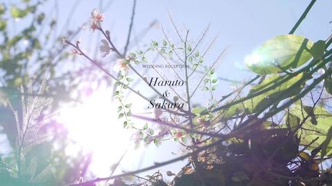 【花鳥風月】オープニングムービー